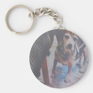 Curious Beagle Basic Round Button Keychain