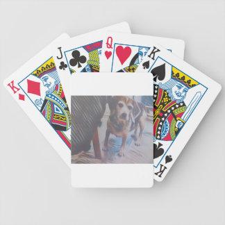 Curious Beagle Bicycle Playing Cards