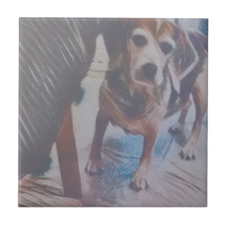 Curious Beagle Tile