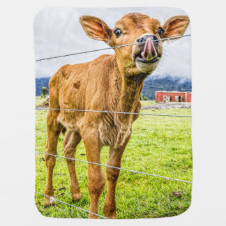 Curious Calf Baby Blanket
