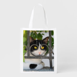 Curious Cat Eyes with Spectacles Frame Funny Photo Market Tote