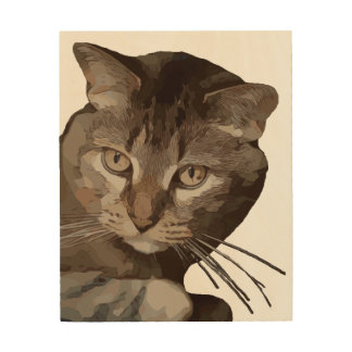 CURIOUS CAT WOOD WALL DECOR