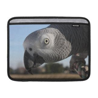 Curious Congo African Grey Parrot MacBook Sleeves