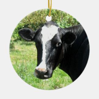 Curious Cow Ornament