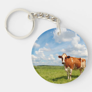 Curious cow standing on meadow. Single-Sided round acrylic keychain