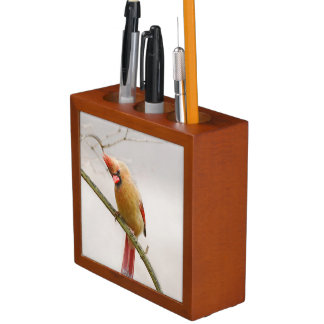 Curious Female Cardinal Desk Organizer