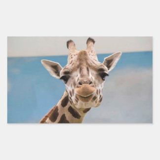Curious Giraffe Sticker