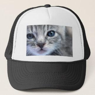 Curious Grey Kitten Trucker Hat