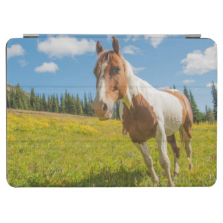 Curious horse in an alpine meadow in summer iPad air cover