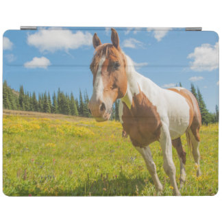 Curious horse in an alpine meadow in summer iPad cover