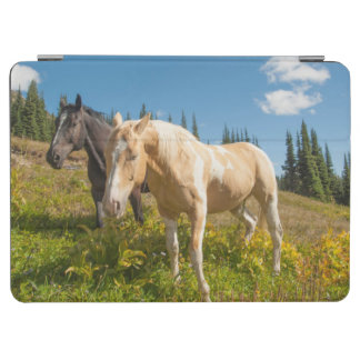 Curious horses foraging on grass iPad air cover