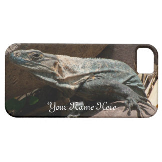 Curious Iguana; Customizable Case For The iPhone 5