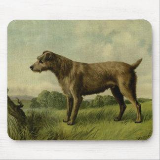 Curious Irish Terrier Mouse Pad