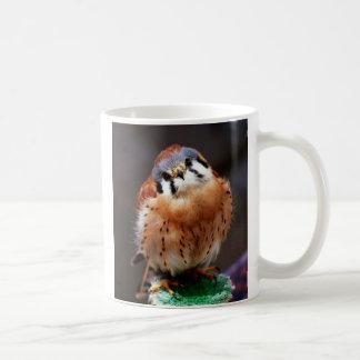 Curious Kestrel Coffee Mug