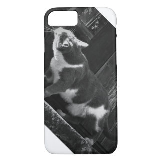 Curious Kitty iPhone 7 Case