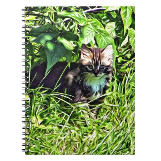 Curious little kitten spiral notebooks