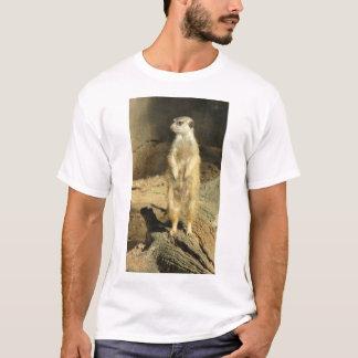 Curious Meerkat T-Shirt