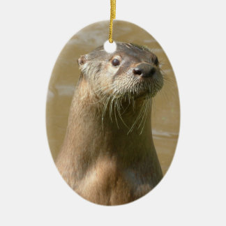 Curious Otters Ornament