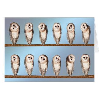 Curious owls blank card. card