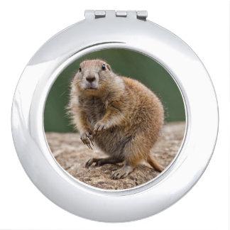 Curious Prairie Dog Compact Mirror