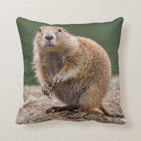 Curious Prairie Dog Pillow