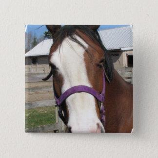 Curious Quarter Horse Square Pin