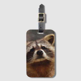 Curious Raccoon Luggage Tag