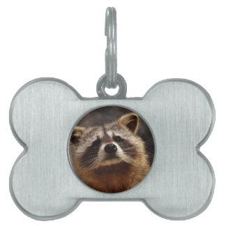 Curious Raccoon Pet Name Tag