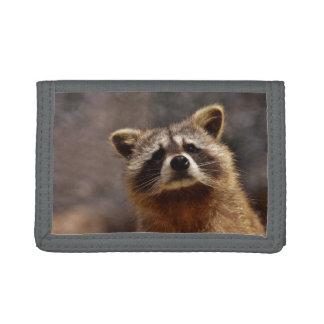 Curious Raccoon Tri-fold Wallet