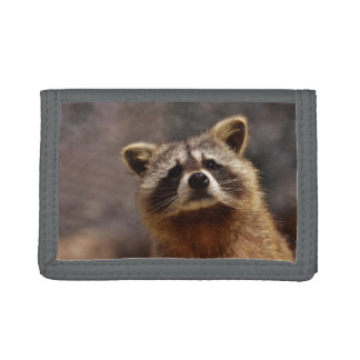 Curious Raccoon Trifold Wallets