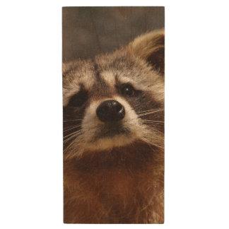 Curious Raccoon Wood USB Flash Drive