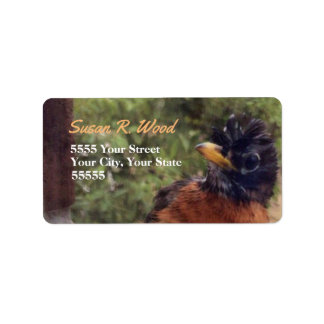 Curious Robin Custom Address Labels
