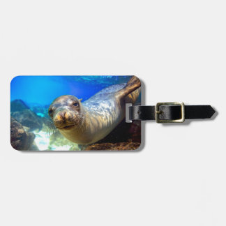Curious sea lion underwater Galapagos paradise Luggage Tag