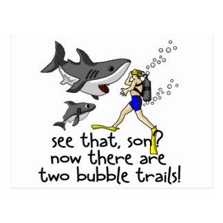 Curious Sharks Postcard