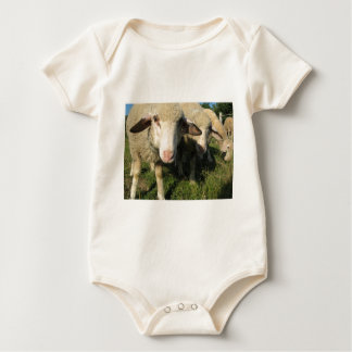 Curious sheep baby bodysuit