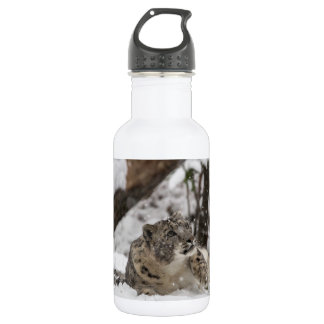 Curious Snow Leopard in Snow 532 Ml Water Bottle