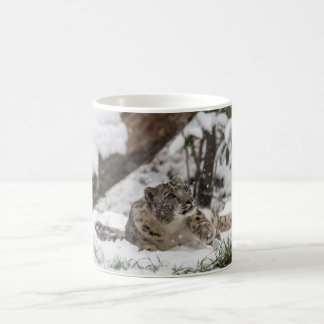 Curious Snow Leopard in Snow Coffee Mug