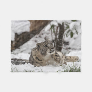Curious Snow Leopard in Snow Fleece Blanket