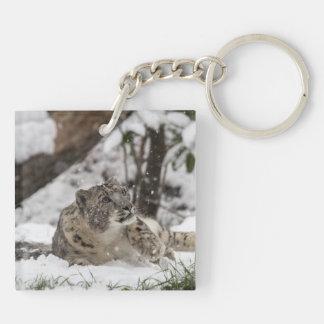 Curious Snow Leopard in Snow Keychain