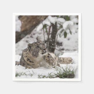 Curious Snow Leopard in Snow Paper Napkin