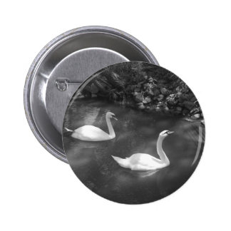 Curious Swans Button