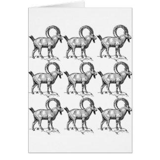 curl horn ibex card