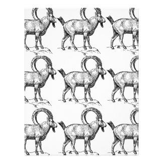 curl horn ibex letterhead