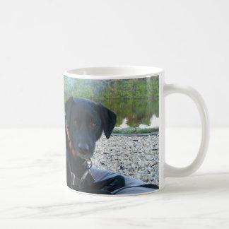 curled up doggie coffee mug