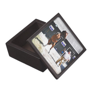 Curlin - Dyning Out Hip #13 Premium Jewelry Boxes