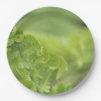 Curling Fern Leaves, Greenery, Blurred Background 9 Inch Paper Plate