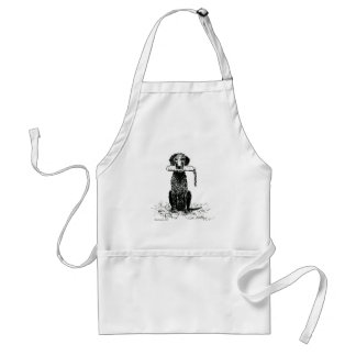Curly Coated Retriever with Bumper Aprons