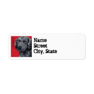 Curly Color Block Return Address Label