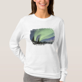 Curtains of green aurora borealis in the sky 2 T-Shirt