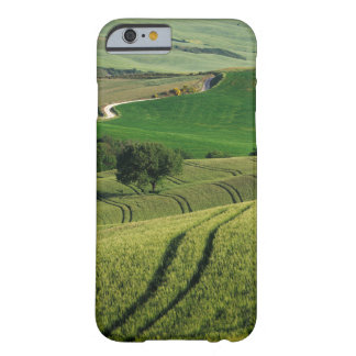 Curvy lines in green Tuscany iPhone case